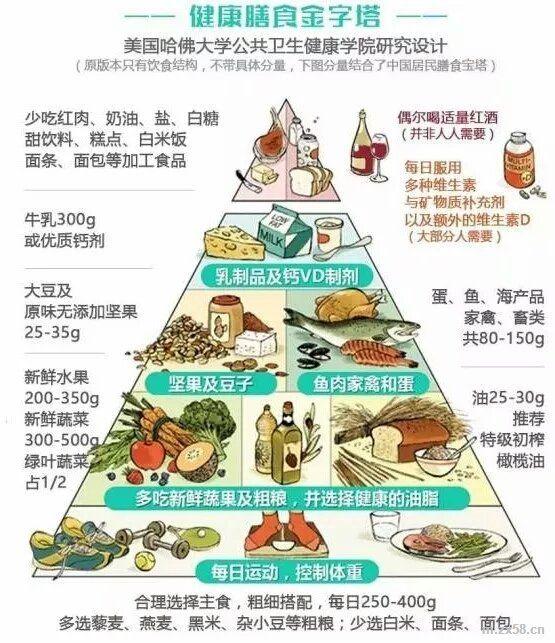 健康膳食金子塔