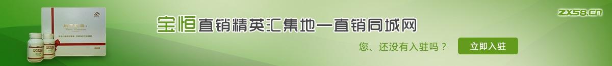 中国最大最专业的宝恒直销平台