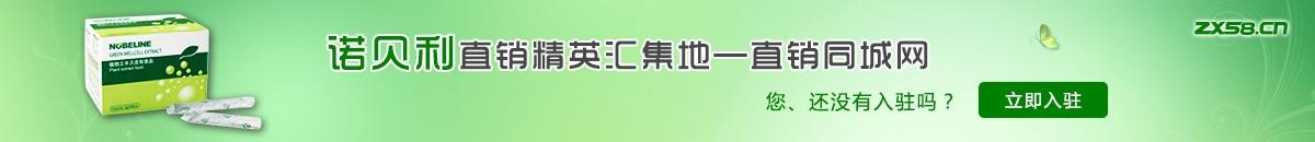 中国最大最专业的诺贝利直销平台