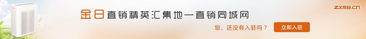中国最大最专业的金日直销平台