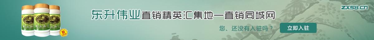 中国最大最专业的东升伟业直销平台