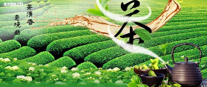 金岭茶业直销如何加盟?