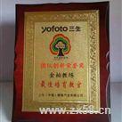 团队创新荣誉奖