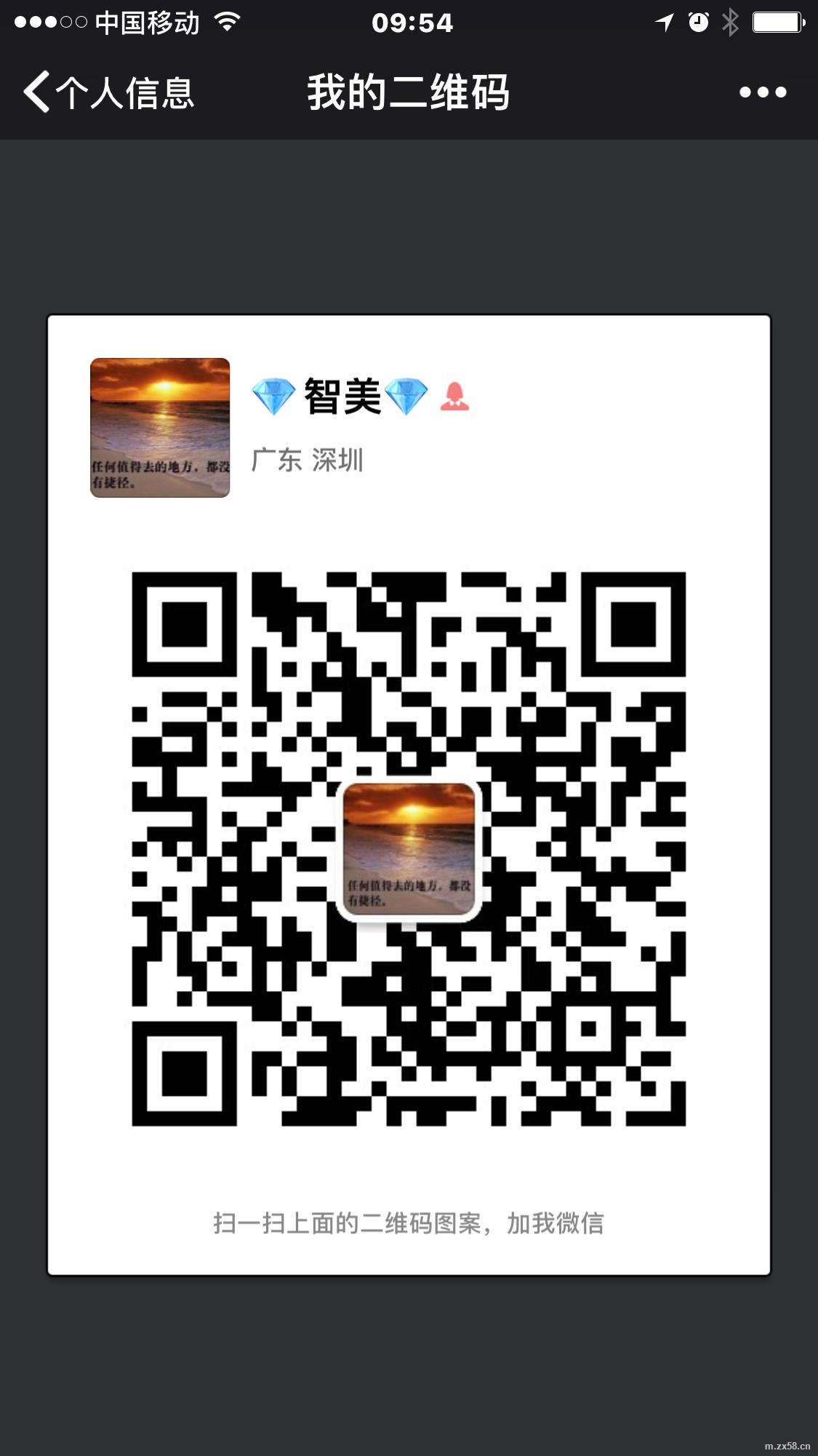 婕斯红宝石总裁婕斯中国系统合一团队