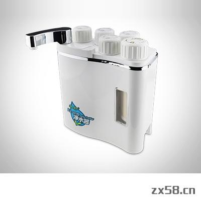 国珍水珍FZ-01型净水...