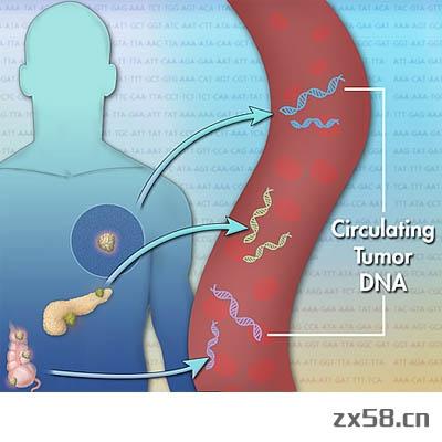 健海循环肿瘤DNA (ctDNA)检测
