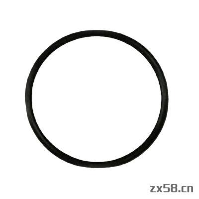安利O型环(S30)