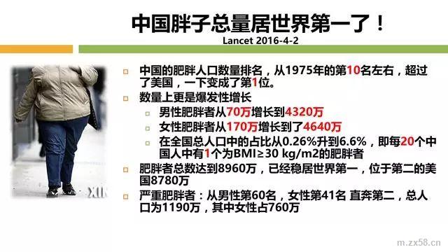 中国胖子排名