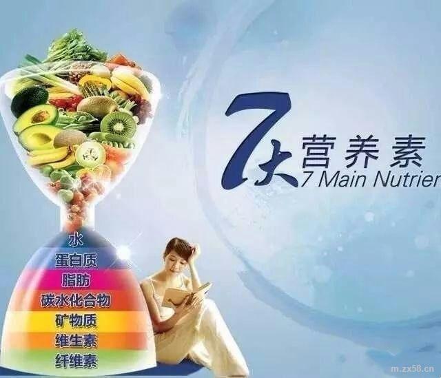 人体需7大营养素