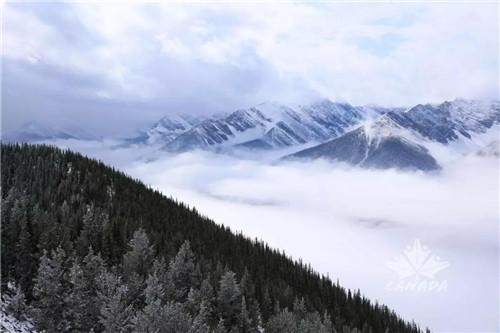 """三生:漫天飞雪,我们和落基山脉""""面对面""""!"""