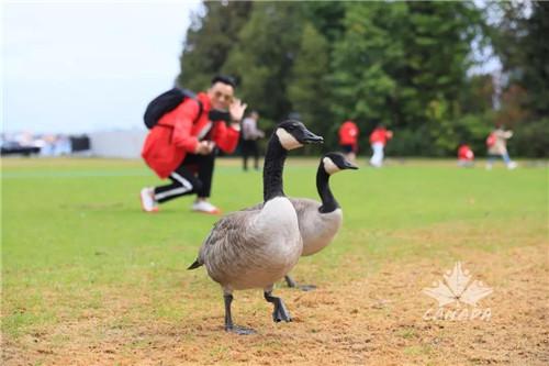 三生健康晨跑在斯坦利公园开启!