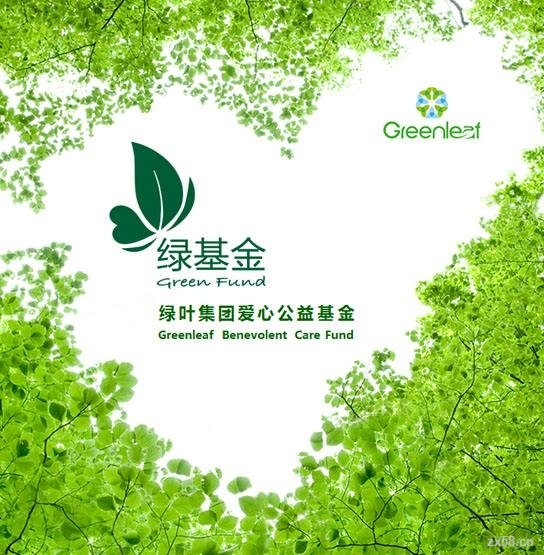 山东-青岛-绿叶