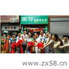 重庆翔裔团队