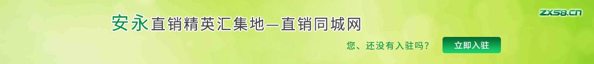 中国最大最专业的安永直销平台