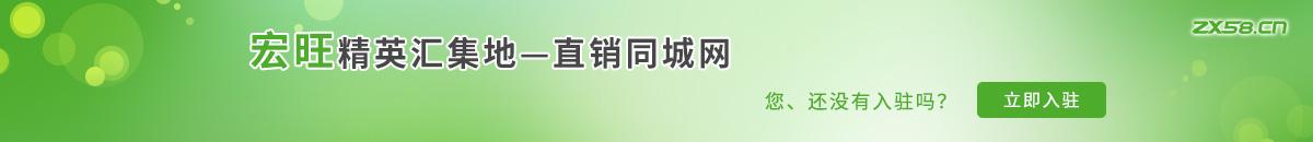 中国最大最专业的宏旺网络平台