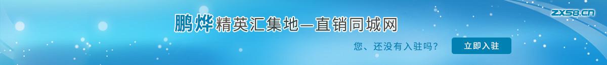 中国最大最专业的鹏烨网络平台