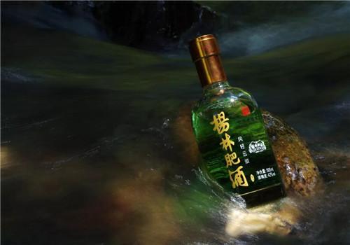 理想科技震撼首发丨2018杨林肥酒形象宣传片:为您讲述130多年的中华老字号传奇