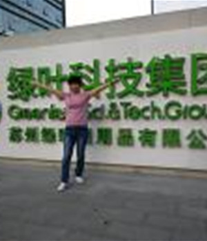 绿叶陈老师