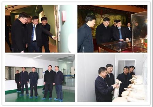 省市司法系统领导在安惠调研
